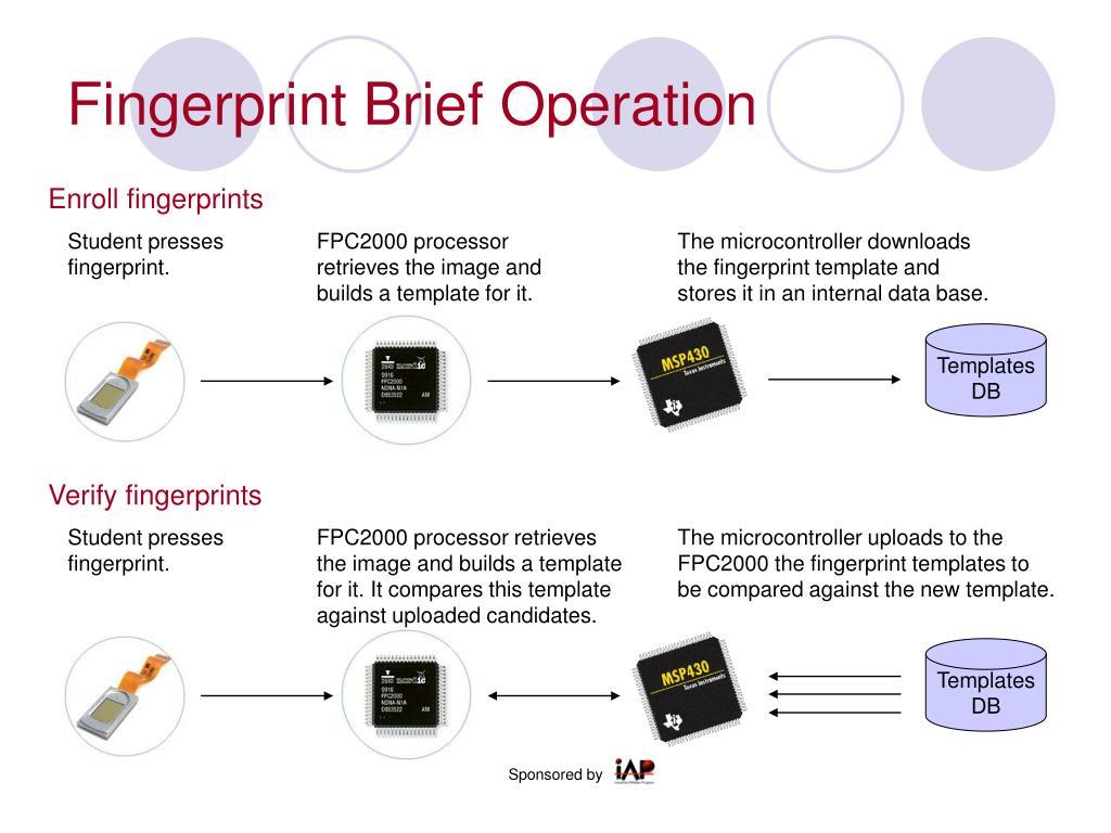 Fingerprint Brief Operation