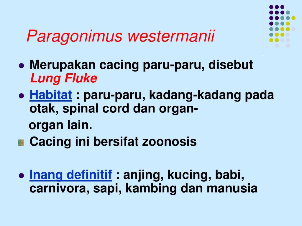Paragonimus westermanii