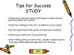 tips for success study4
