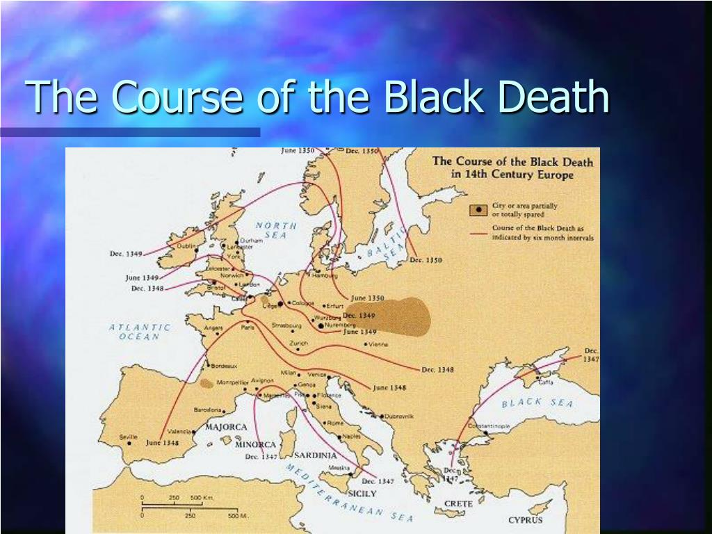 The Course of the Black Death