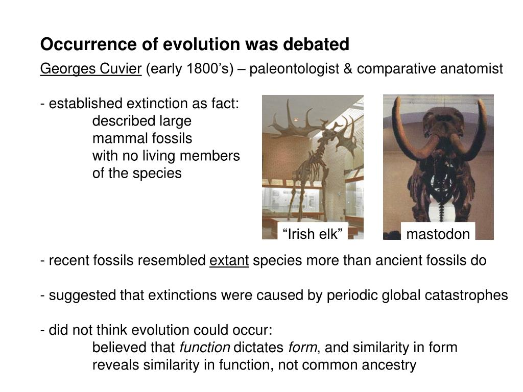 Occurrence of evolution was debated