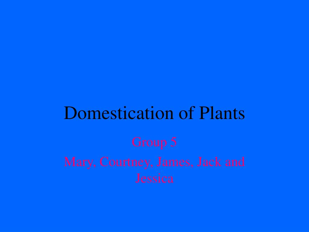 Domestication of Plants