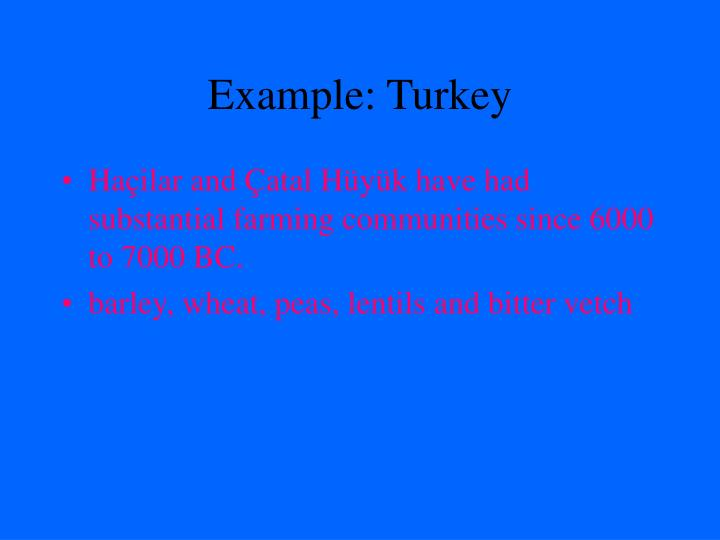 Example turkey