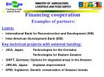 financing cooperation examples of partners
