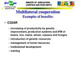 multilateral cooperation examples of benefits