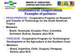 multilateral cooperation examples of partners