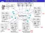 belle data grid bandwidth price g mb