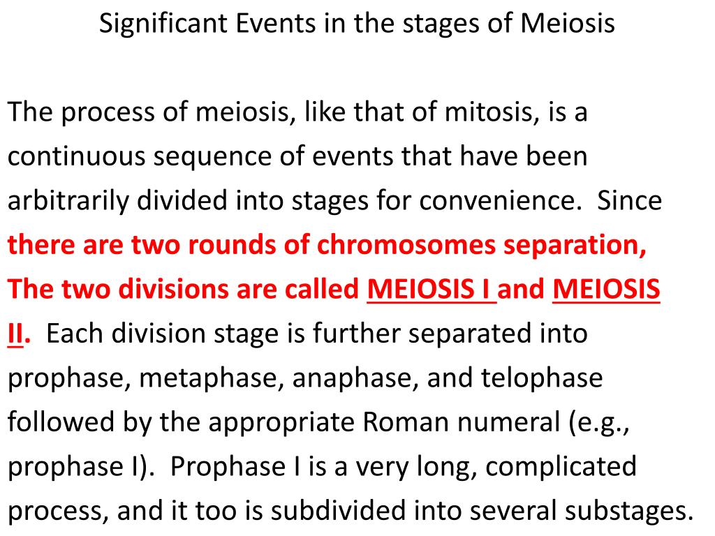 Significant Events in the stages of Meiosis