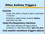 other asthma triggers42