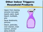 other indoor triggers household products