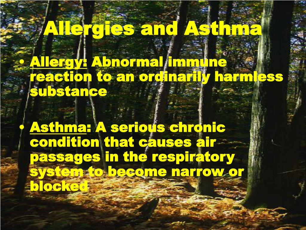 allergies and asthma l.