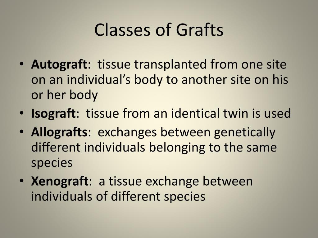 Classes of Grafts
