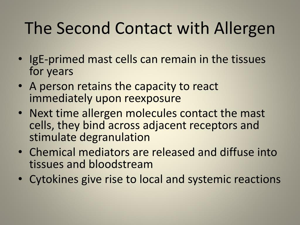 The Second Contact with Allergen