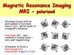magnetic resonance imaging mri polarized