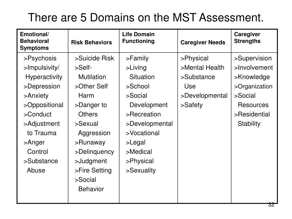 There are 5 Domains on the MST Assessment.