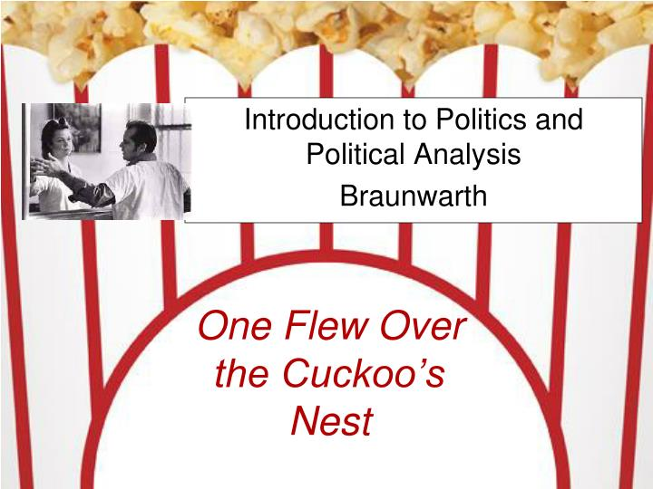 an analysis of one flew over