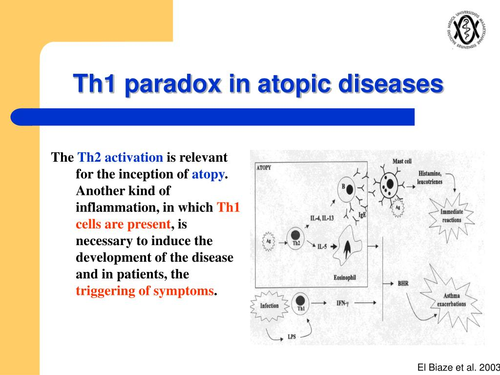 Th1 paradox in atopic diseases