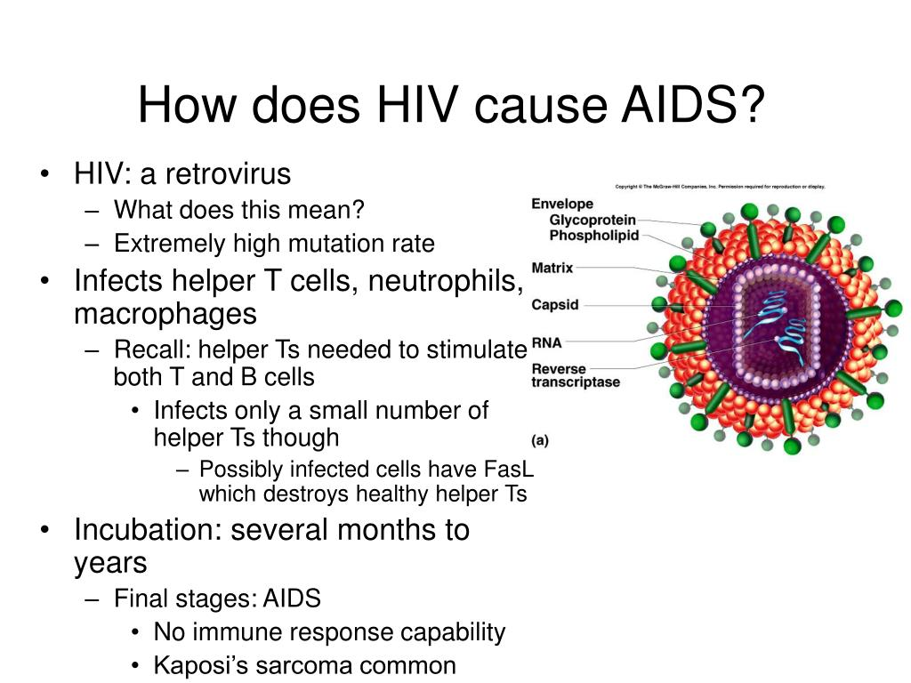 How does HIV cause AIDS?