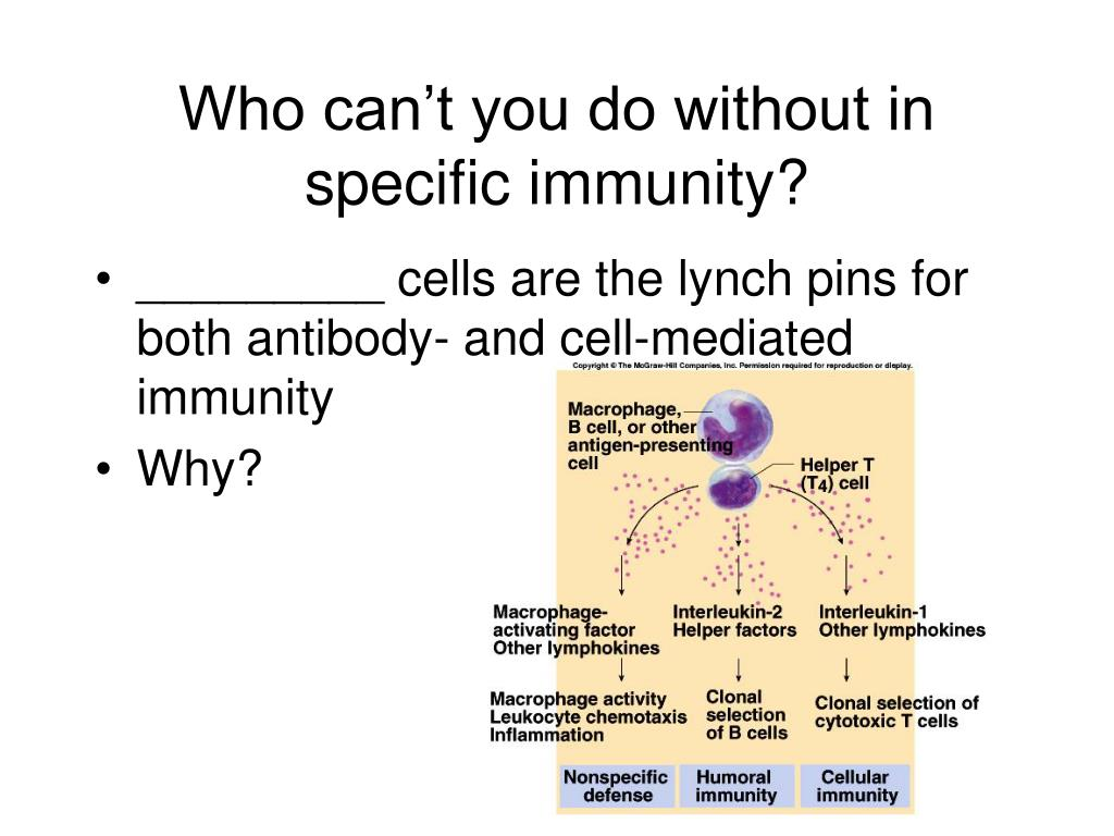Who can't you do without in specific immunity?