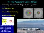the high resolution fly s eye hires