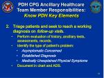 pdh cpg ancillary healthcare team member responsibilities know pdh key elements18