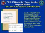 pdh cpg ancillary team member responsibilities be a part of your clinic s pdh cpg team44