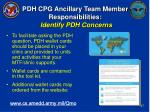 pdh cpg ancillary team member responsibilities identify pdh concerns26