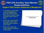 pdh cpg ancillary team member responsibilities support pdh concern diagnosis management30