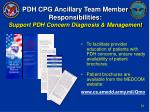 pdh cpg ancillary team member responsibilities support pdh concern diagnosis management33