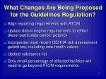 what changes are being proposed for the guidelines regulation