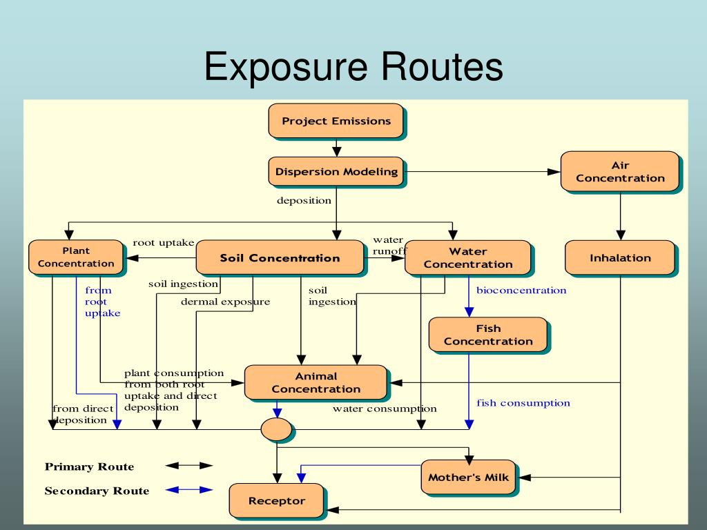 Exposure Routes