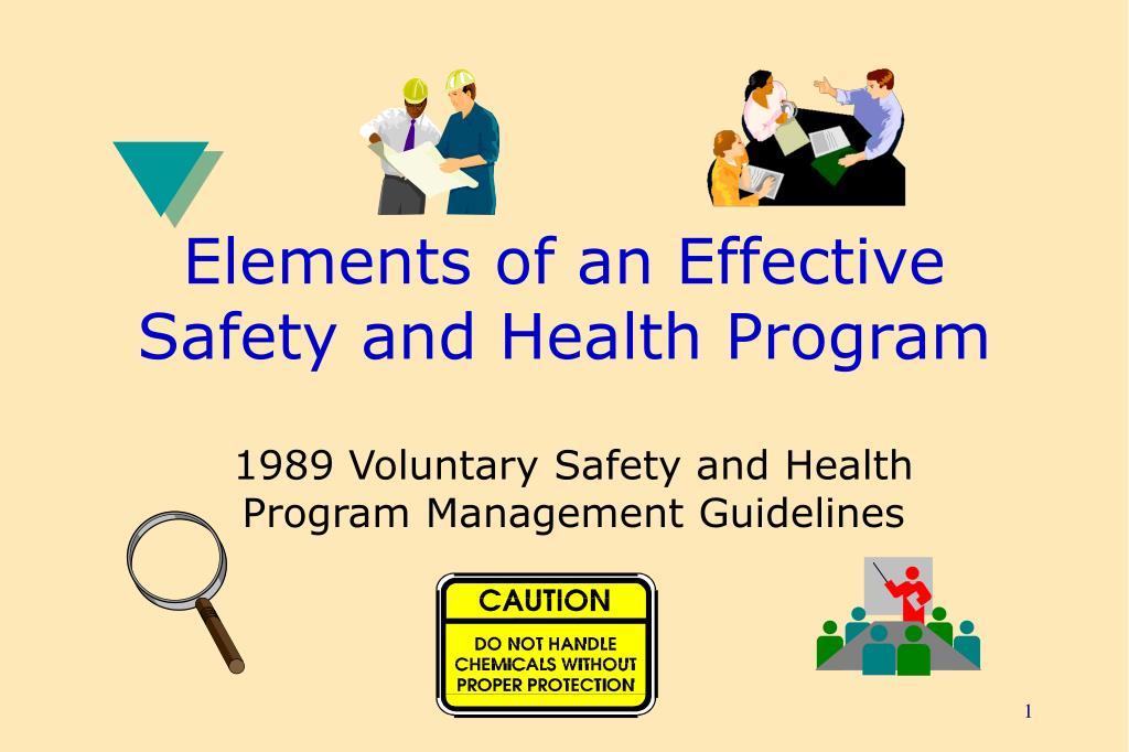 elements of an effective safety and health program l.