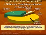 herpes is the most prevalent std 1 million new genital herpes infections per year in the us
