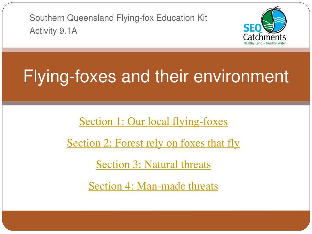 flying foxes and their environment l.