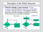 principles of the while structure