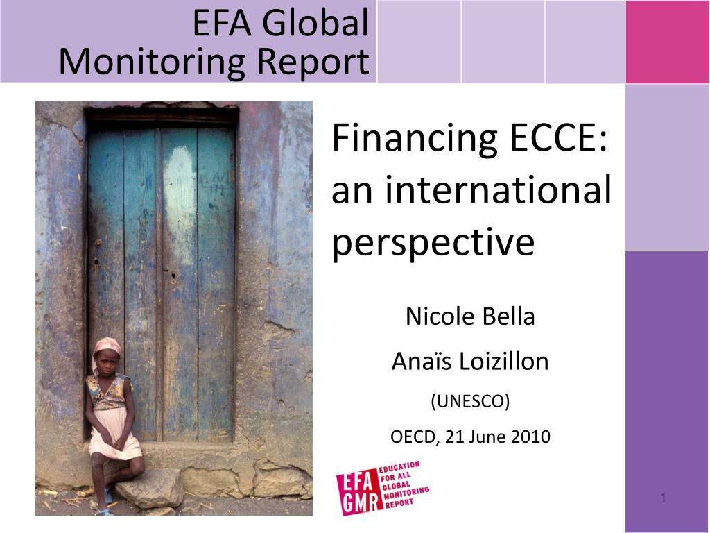 EFA Global Monitoring Report