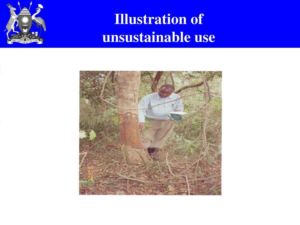 Illustration of unsustainable use