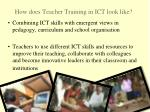 how does teacher training in ict look like