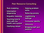peer resource consulting