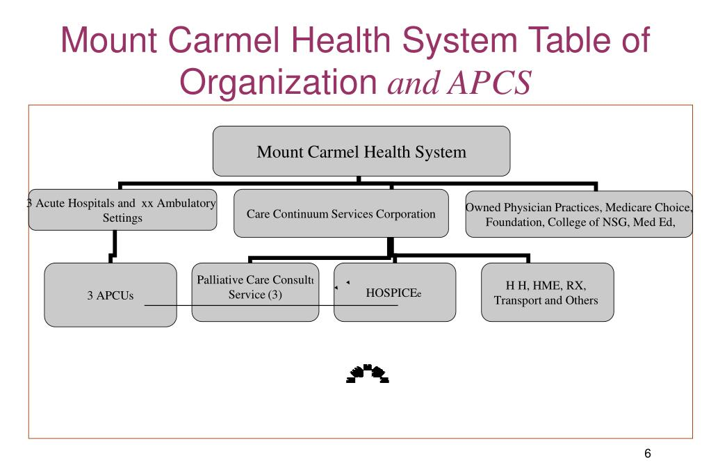 Mount Carmel Health System Table of Organization