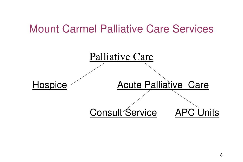Mount Carmel Palliative Care Services
