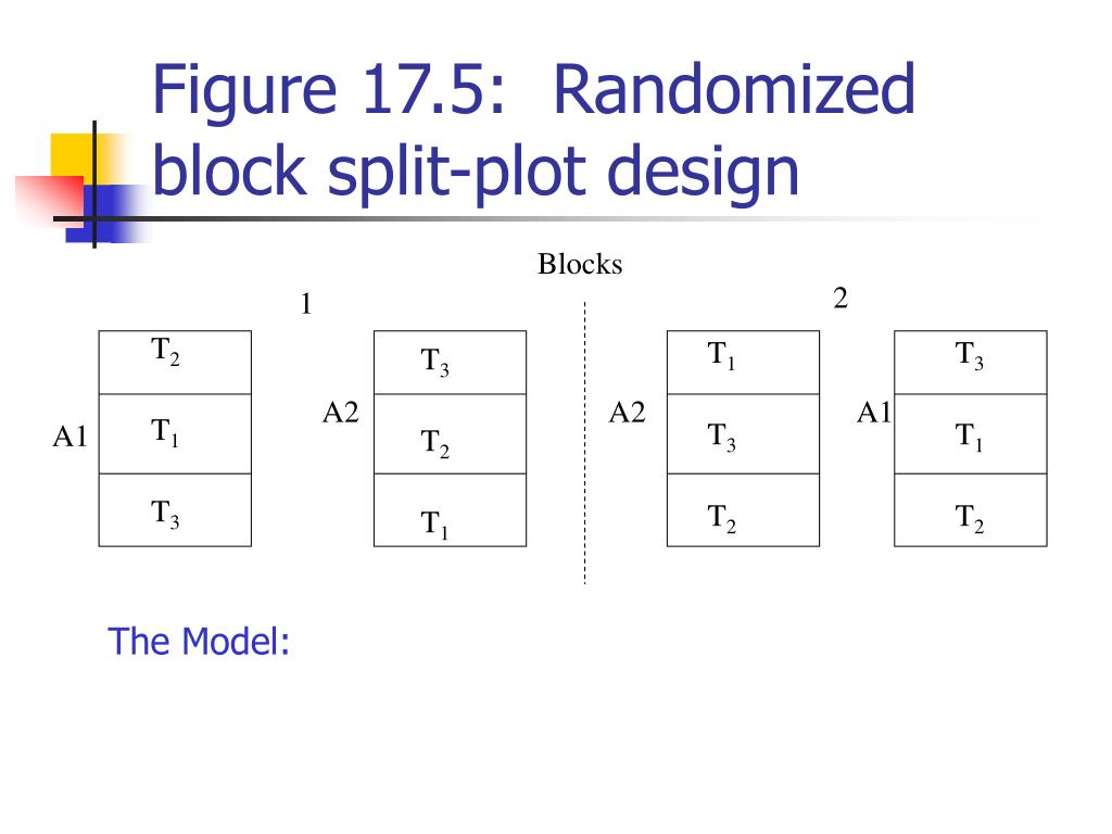 PPT - Analysis of Variance for Some Fixed-, Random-, and Mixed