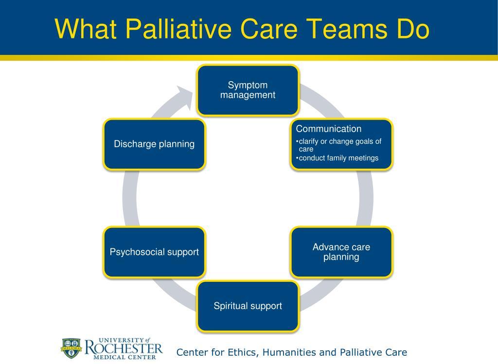 What Palliative Care Teams Do