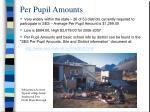per pupil amounts