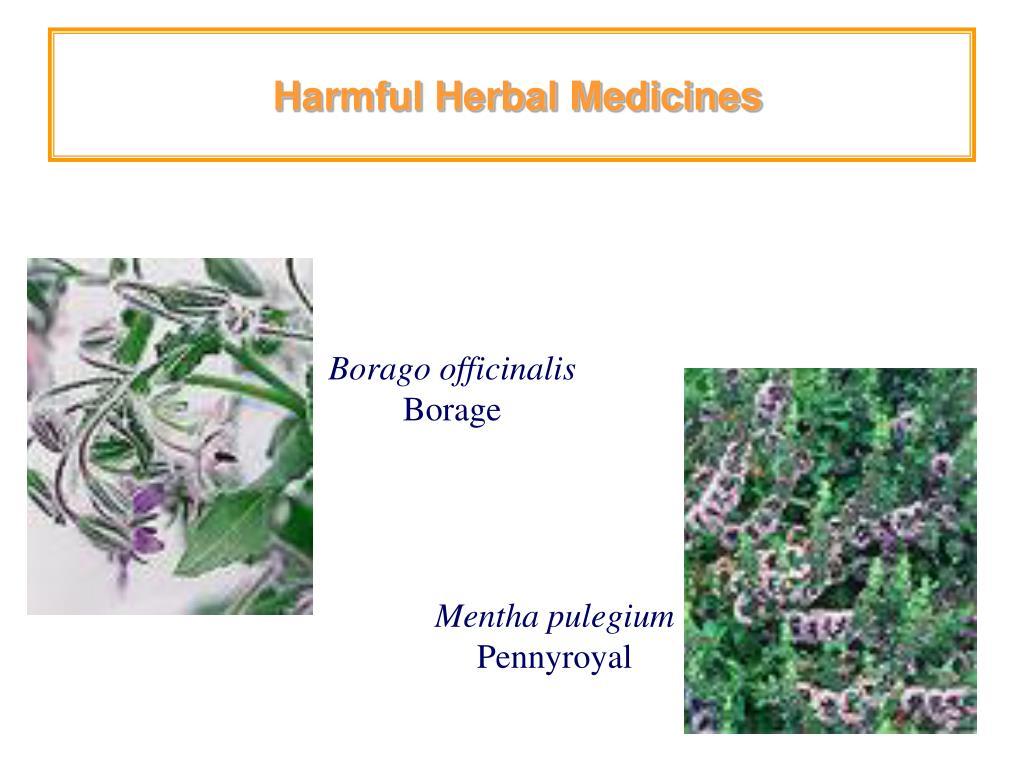 Harmful Herbal Medicines