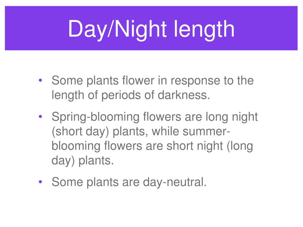 Day/Night length