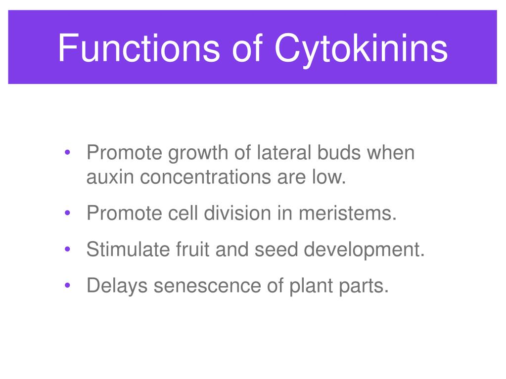 Functions of Cytokinins