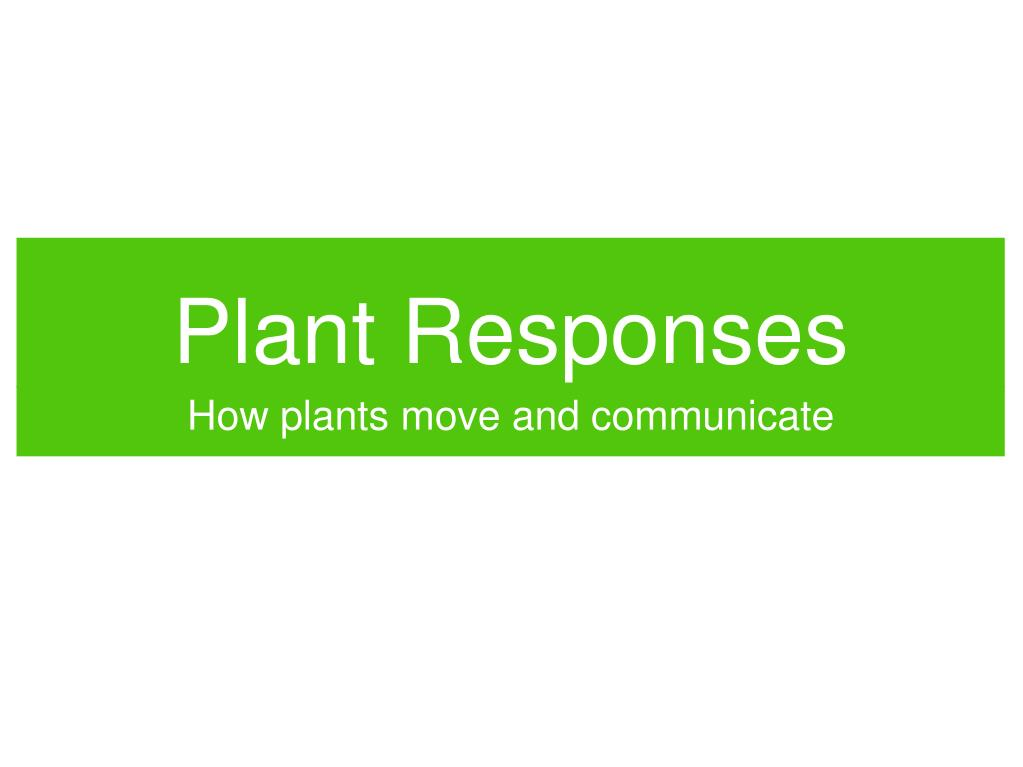plant responses l.