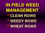 in field weed management