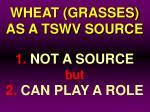 wheat grasses as a tswv source25